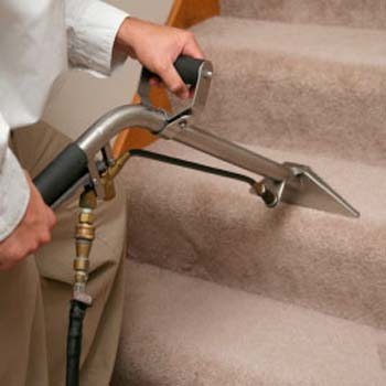 Carpet cleaners torquay
